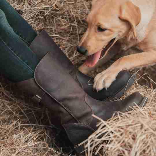 Quebec Waterproof boots in Brown