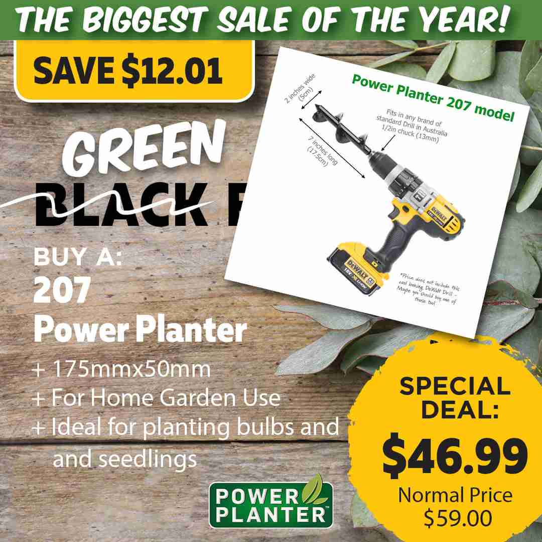 Green Friday Super Deal $59 value for just $46.99 - The biggest sale of the year.