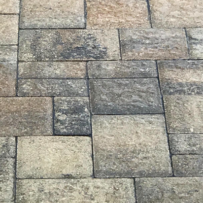 Charcoal with Multi-colored Gray and Beige Pavers