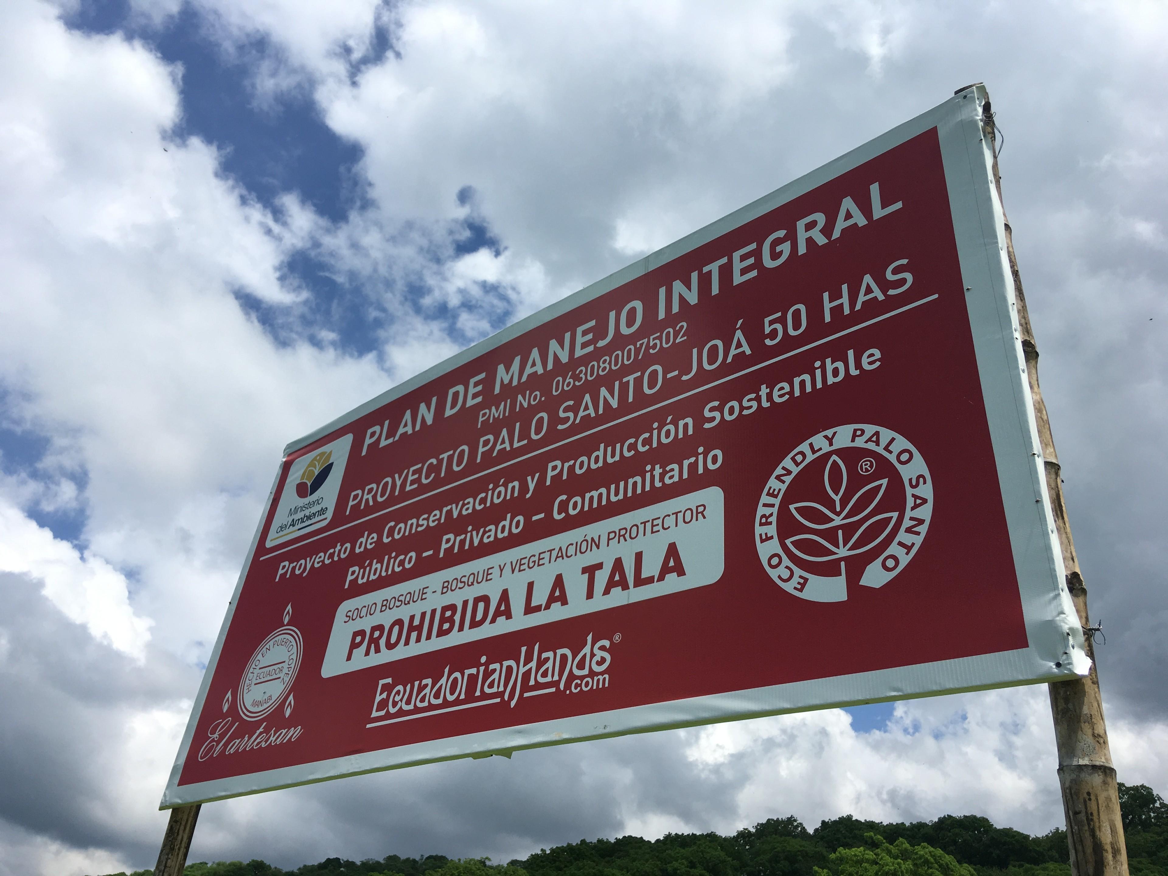 Daily Benefits of Palo Santo