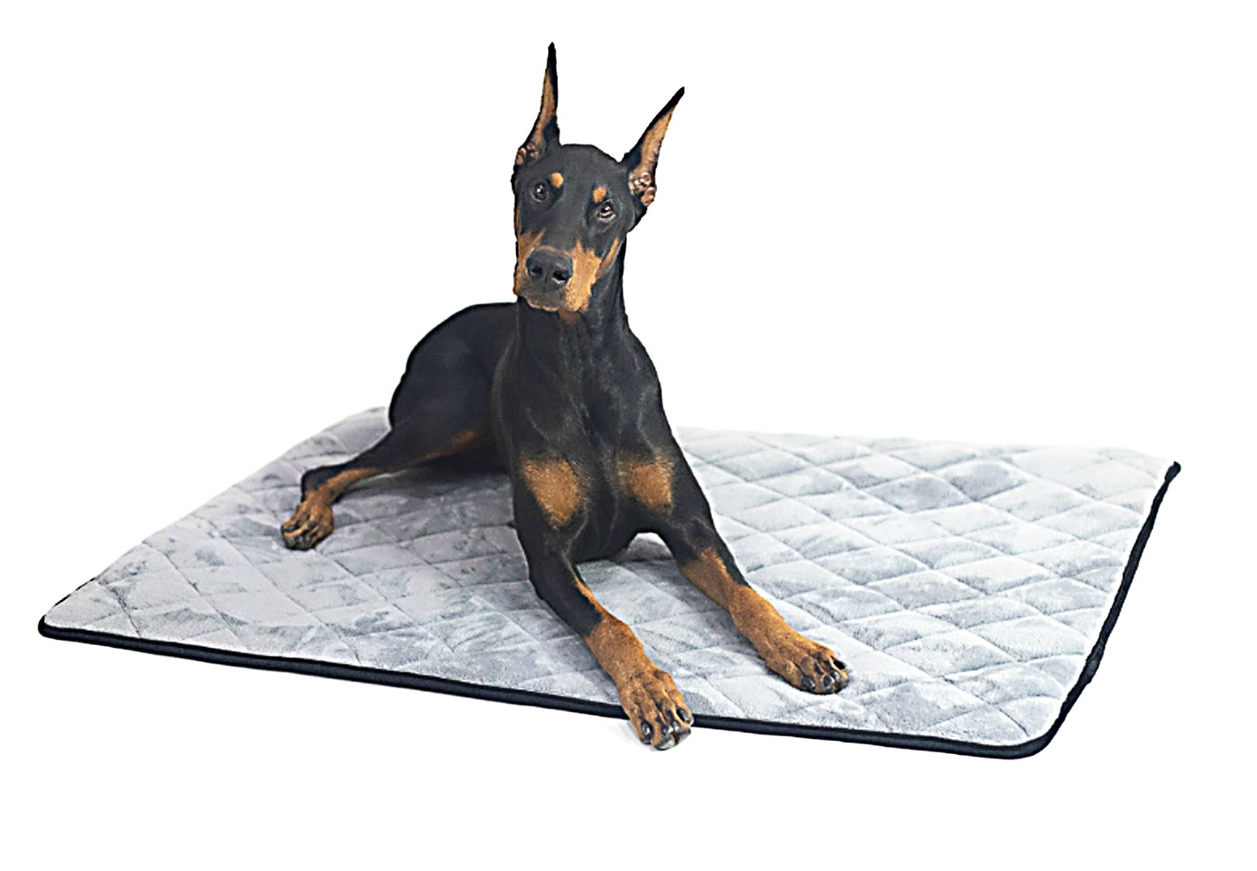 How to Protect Your Dogs Bed Keep It Smelling Fresh - Premium Dog Crate Mat Travel Bed
