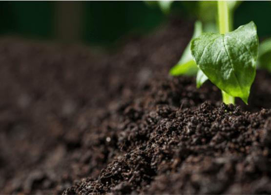 Standard soil classification_soil texture