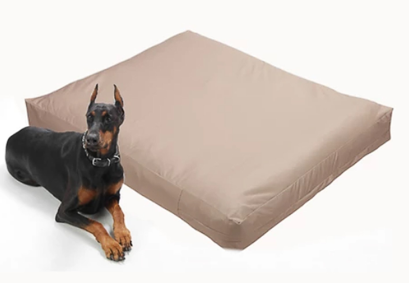 How to Protect Your Dogs Bed Keep It Smelling Fresh - Premium Waterproof Dog Bed Liner