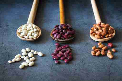 beans protein source