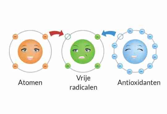 Atomen Vrije radicalen en Antioxidanten