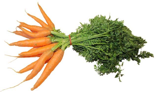 Vitamin A Carrots Joint Clinic