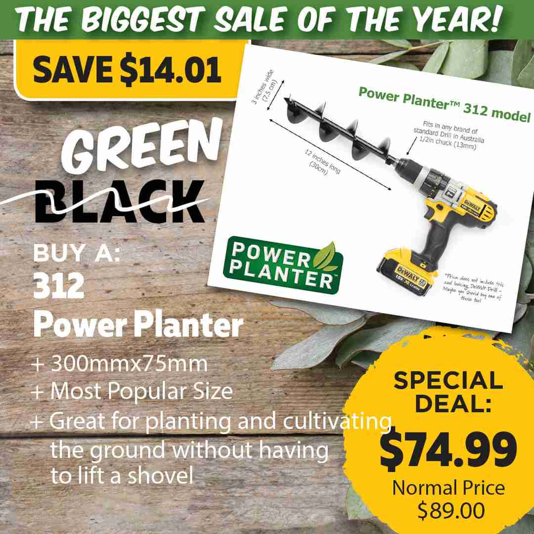 Green Friday Super Deal $89 value for just $74.99 - The biggest sale of the year.