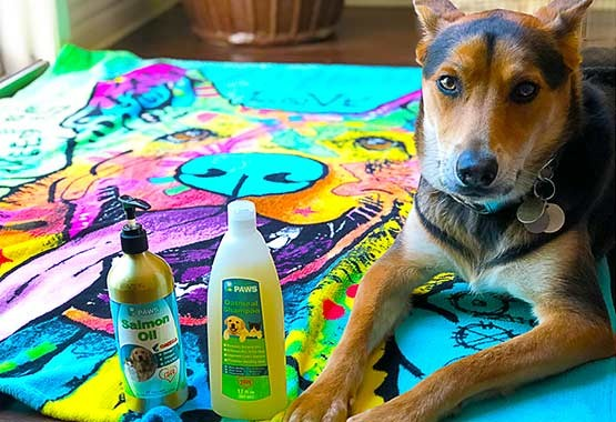 Marshall the Rap Dog - Salmon Oil for Dogs and Cats & Oatmeal Shampoo