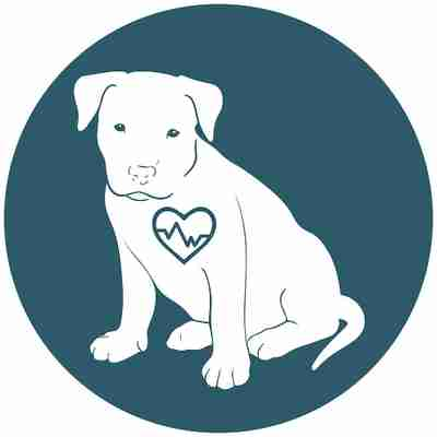 Deep Pressure Touch slows the heart and breathing rate so that your dog's body feels physically calmer