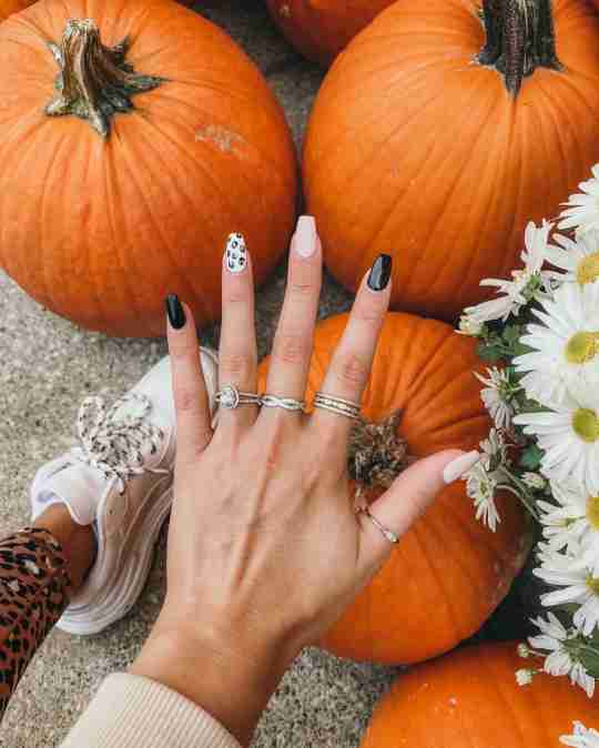 A woman wearing Blush and Bar rings in a pumpkin patch