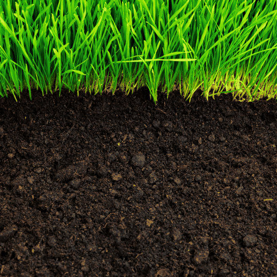EM-1 Microbial Inoculant Soil Health Beneficial Microorganisms