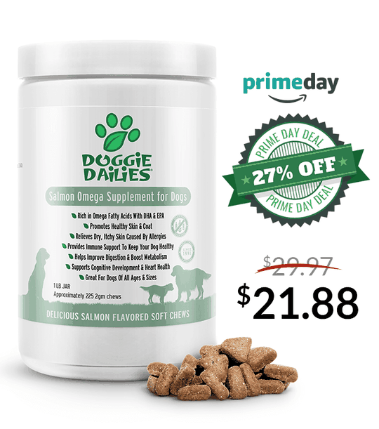 Amazon Prime Day Deals! 27% Off Our Salmon Omega Soft Chews for Dogs
