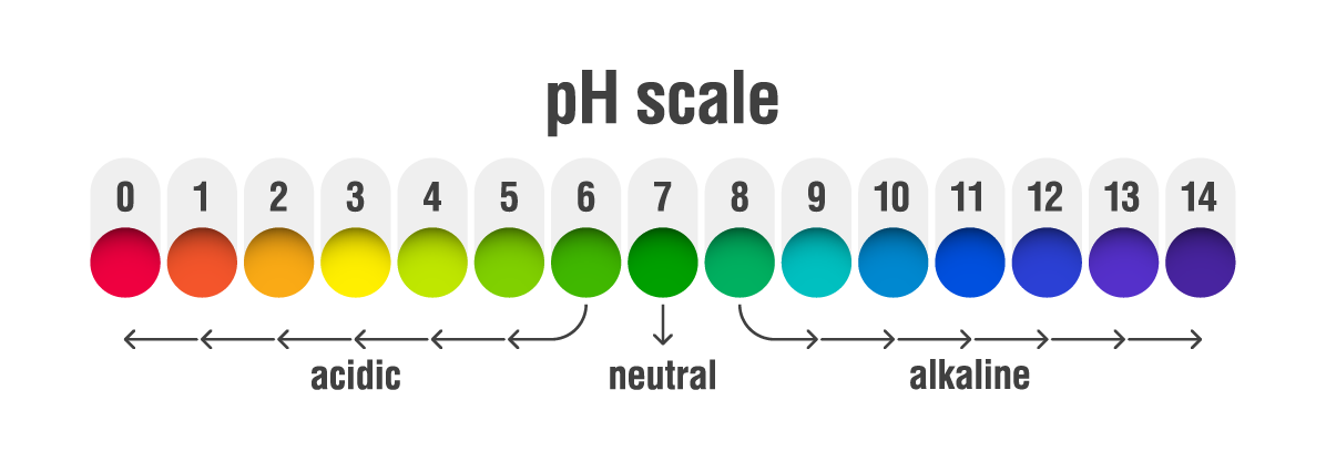 Seroflora Vaginal pH Scale