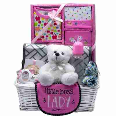 Baby accessories in a gift basket