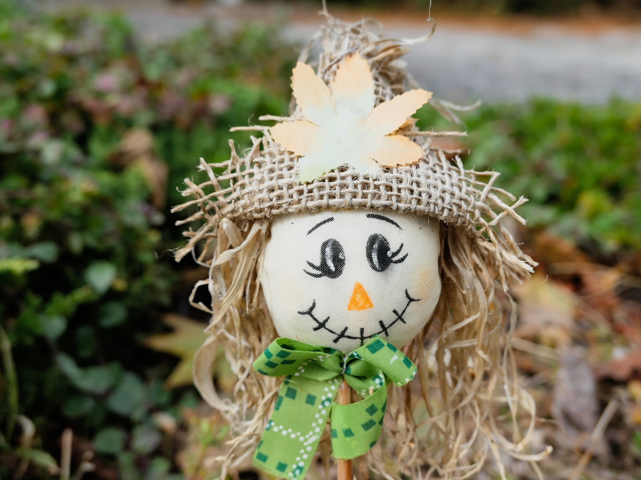 cute smiling scarecrow
