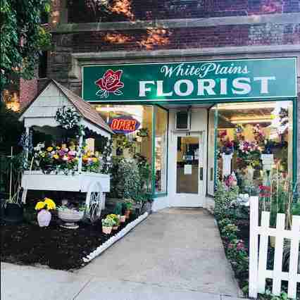 This is the White Plains Florist storefront.