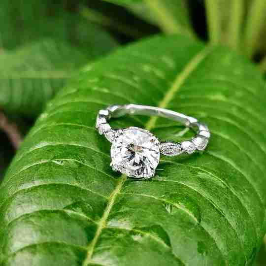A Fascinating Diamonds ring on a leaf