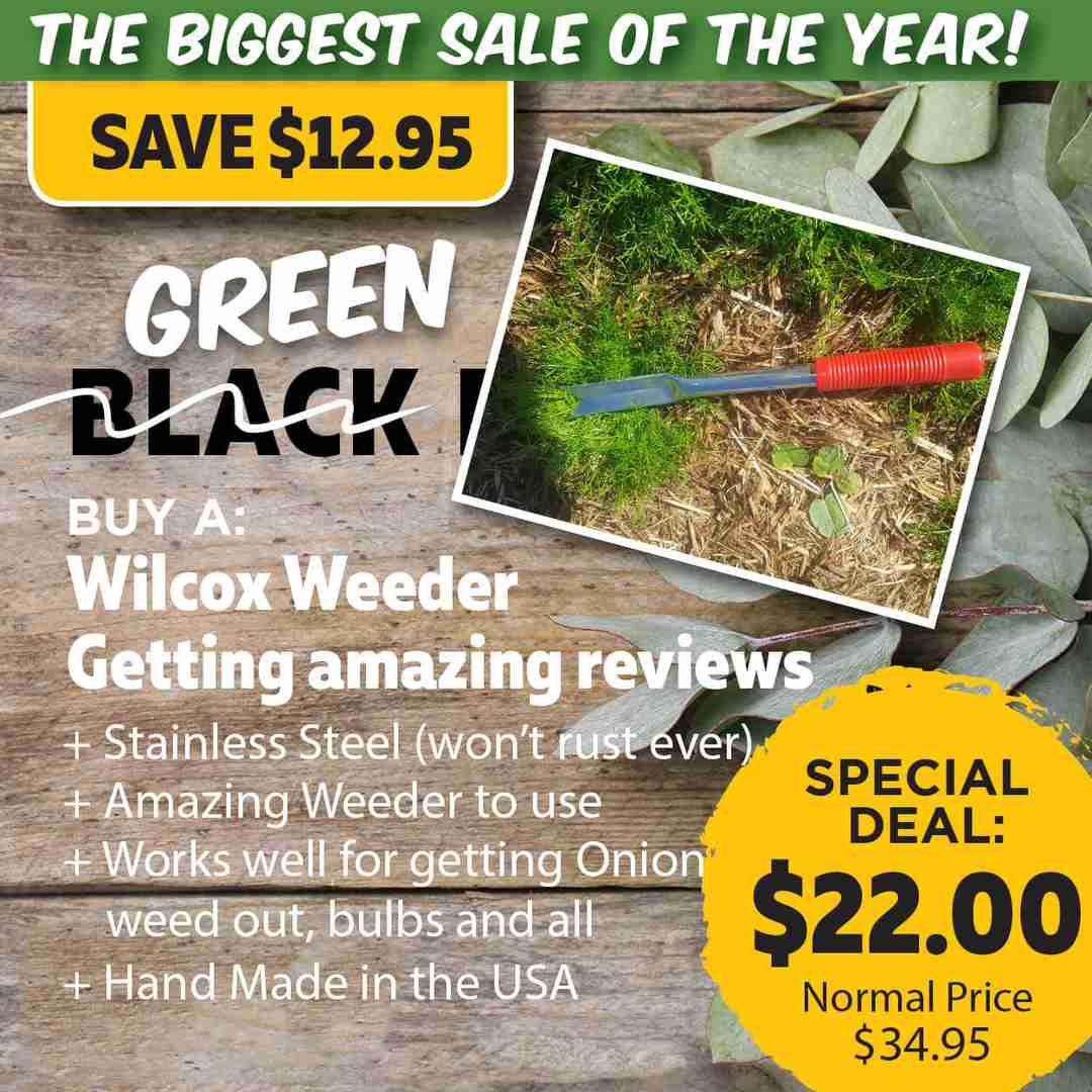 Green Friday Super Deal $34.95 value for just $22 - The biggest sale of the year.