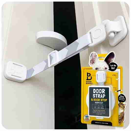 door latch and door stop for cats and dogs - article image