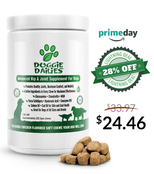 Amazon Prime Day Deals! 28% Off Our Advanced Hip & Joint Soft Chews for Dogs