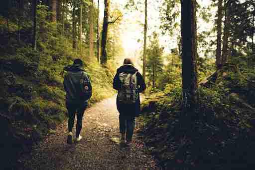 hiking buddies walking through a nature trail