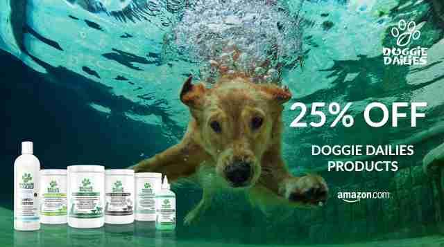 Doggie Dailies Summer Flash Sale