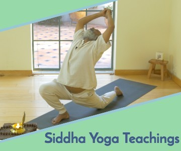 kalangi kundalini yoga siddha teachings