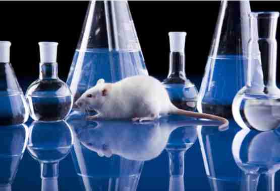 Dierentesten voor wetenschappelijk onderzoek.