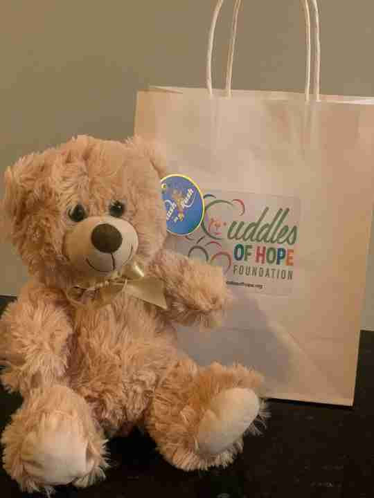 A beige bear sitting next to a gift bag