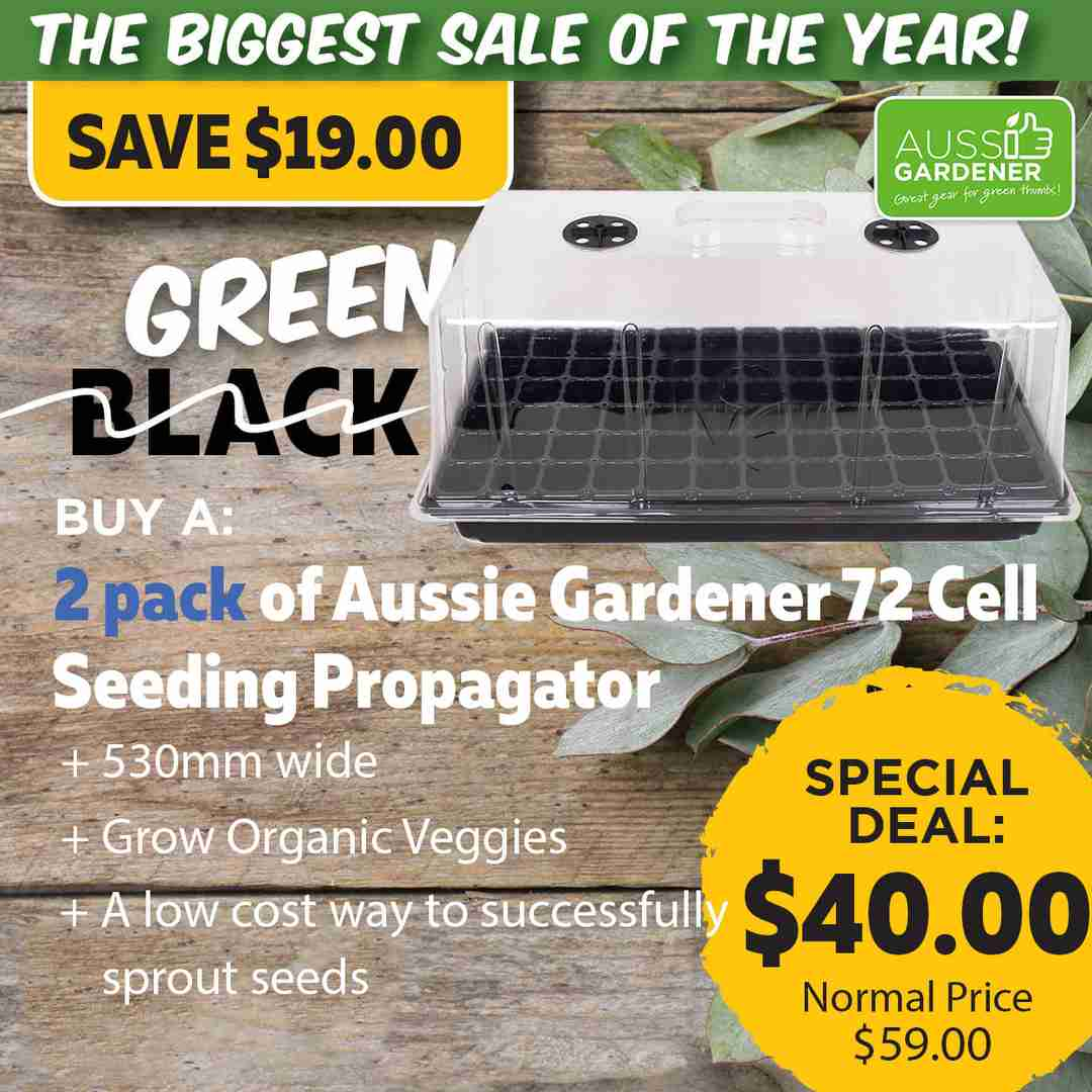Green Friday Super Deal $59 value for just $40 - The biggest sale of the year.