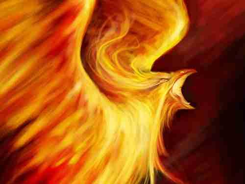 The Phoenix Enigma