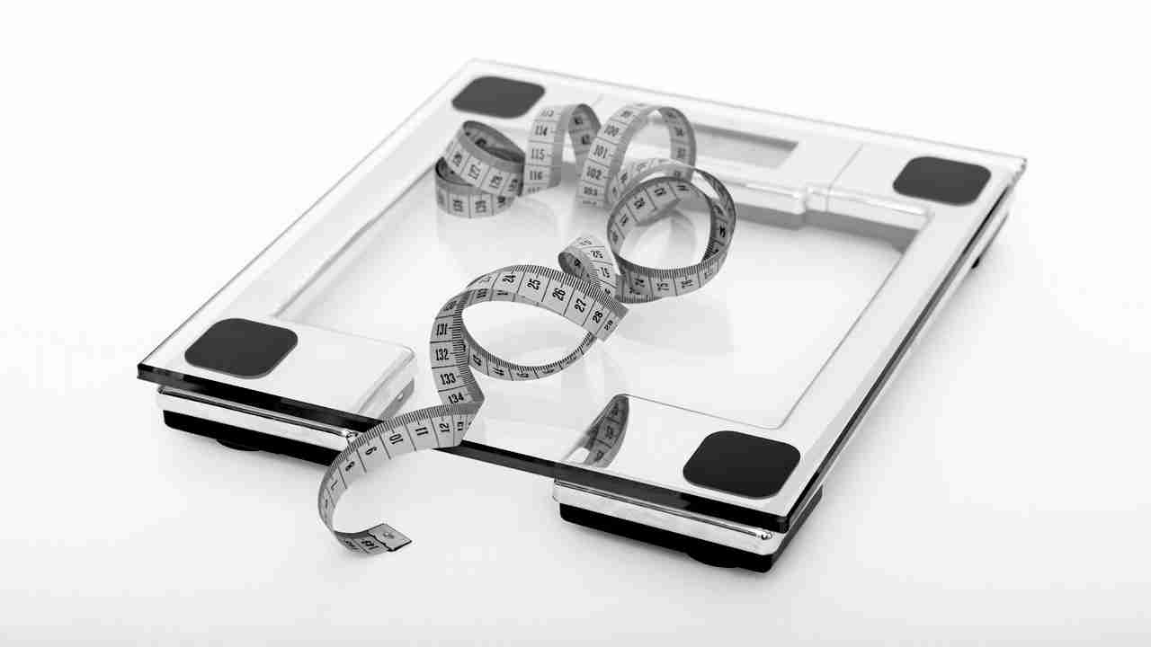 weight loss and regain scales