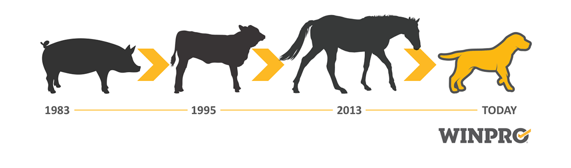EVOLUTION OF THE USE OF BLOOD PROTEINS IN ANIMALS