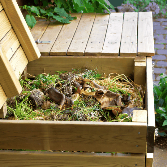 options to start composting