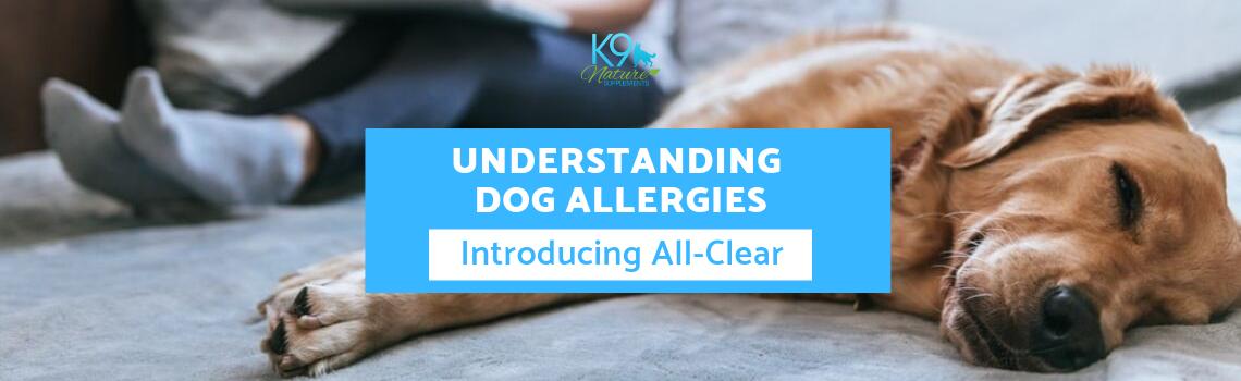 Understanding Allergies_All-Clear