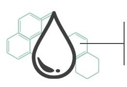 Sodium Hyaluronate Hyaluronic Acid