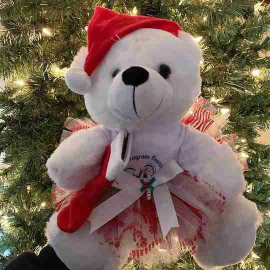 A white bear in a Santa hat and red tutu