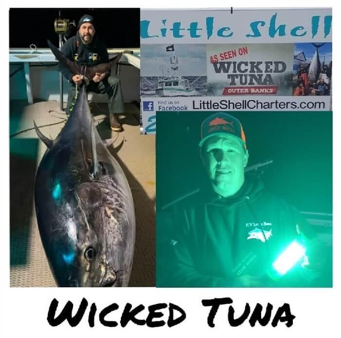 bluefin tuna green fishing light