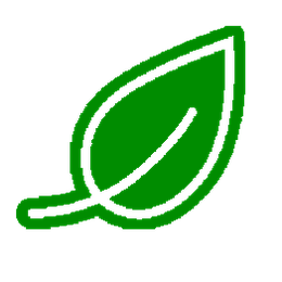 picture of a green leaf