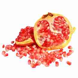 <a href='https://pngtree.com/so/fruit'>fruit png from pngtree.com</a>