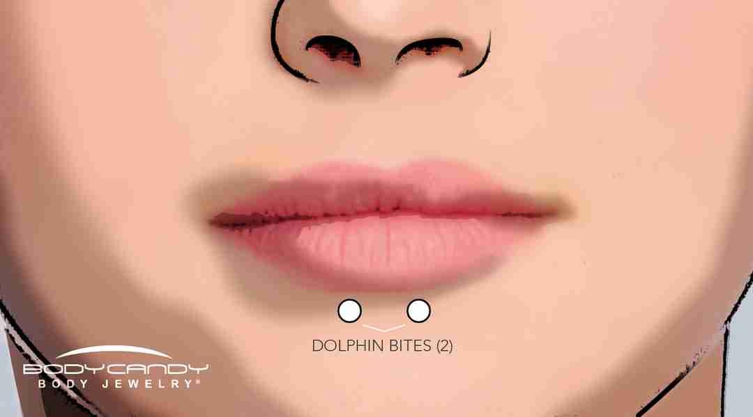 dolphin bites