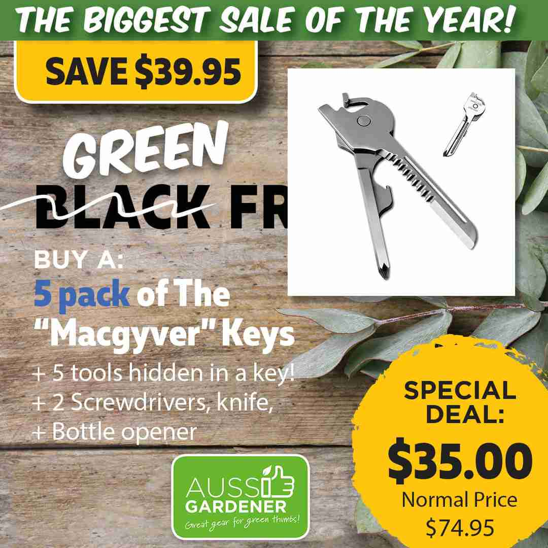 Green Friday Super Deal $74.95 value for just $35 - The biggest sale of the year.