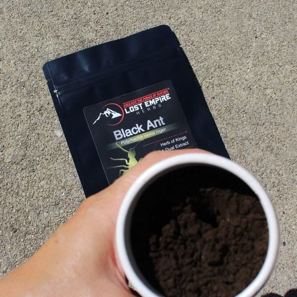 Hand Holding Black Ant Powder in Cup