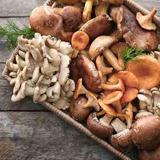 assorted mushrooms in basket on wood table