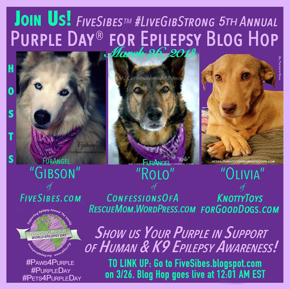 Purple Day®: Highlighting K9 Epilepsy Education & Clinical Trials