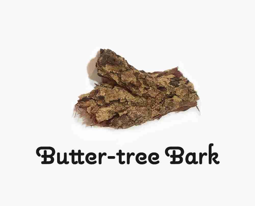 Butter Tree Bark