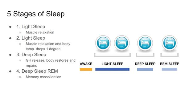 Stages of Sleep Light Sleep Deep Sleep REM Awake