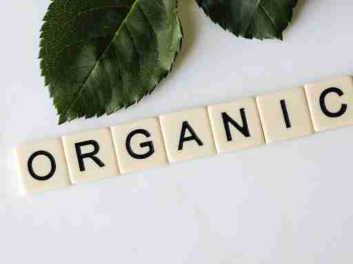 organic leaves tile squares