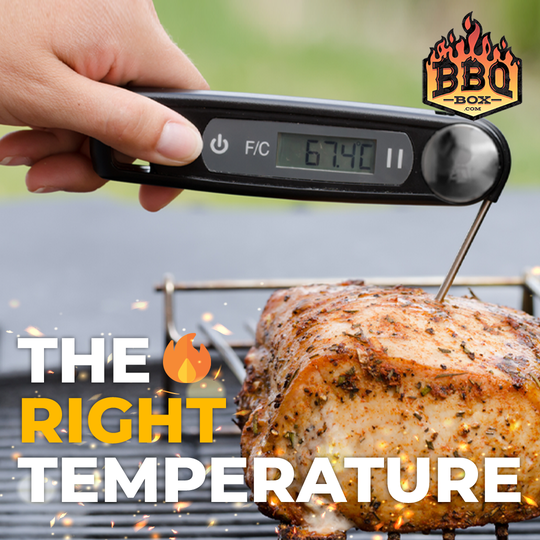 hand holding a meat thermometer stuck into meat