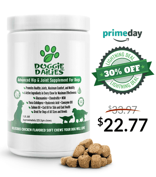 Amazon Prime Day Deals! 30% Off Our Advanced Hip & Joint Soft Chews for Dogs